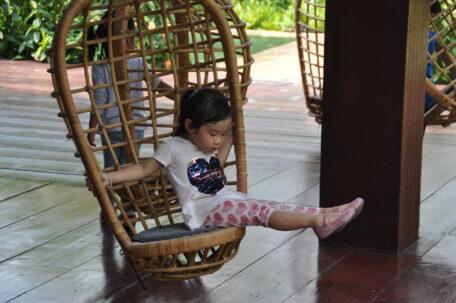 Campus Swings | Purple Elephant 49 International School Bangkok 02