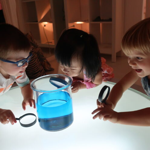 Curriculum Light And Colours | The Country School International School Bangkok.jpg