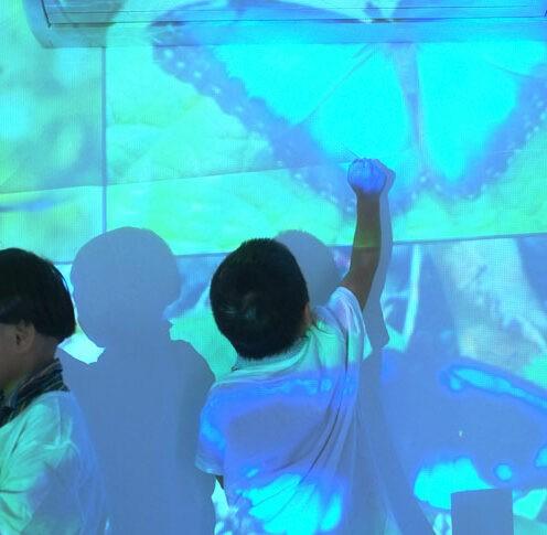 ELC Theatre of Imagination Butterflies   City School International School Bangkok