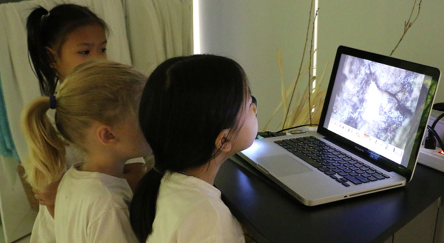Elc Atelier Of Nature Learning   City School International School Bangkok