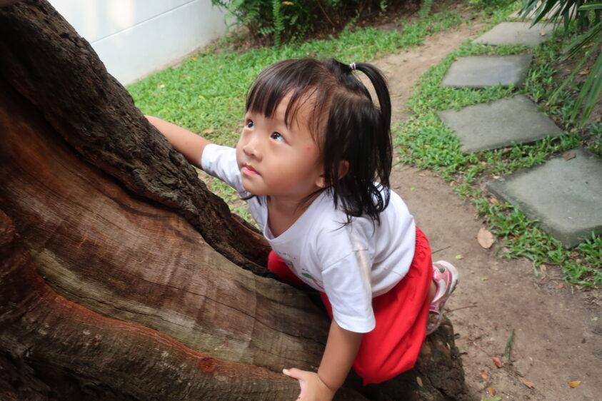 Garden Play | The Country School International School Bangkok.jpg