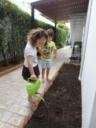 Learning About Plants | The Country School International School Bangkok