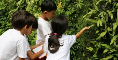 Learning Biology | City School International School Bangkok