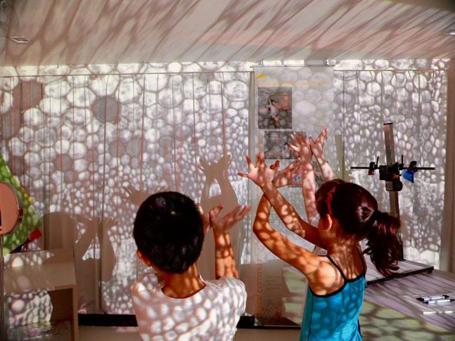 Project Year 2 | City School International School Bangkok 01