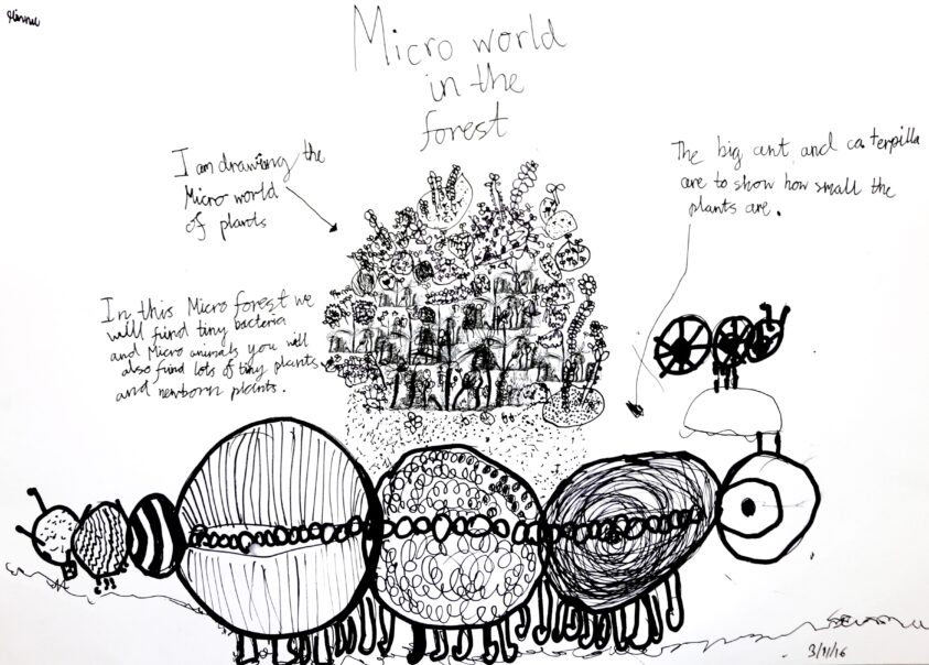Y4 Micro World Life Forms 125